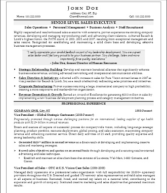 Senior Level Sales Executive Resume
